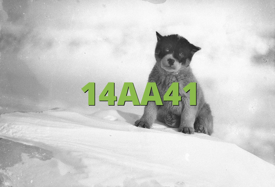14AA41