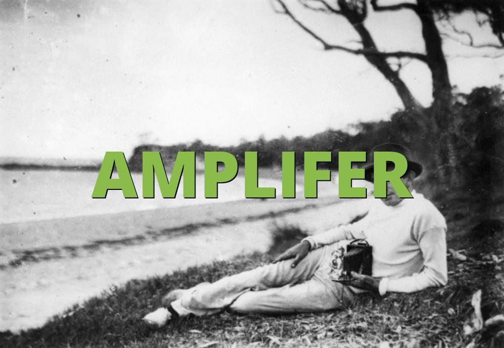 AMPLIFER