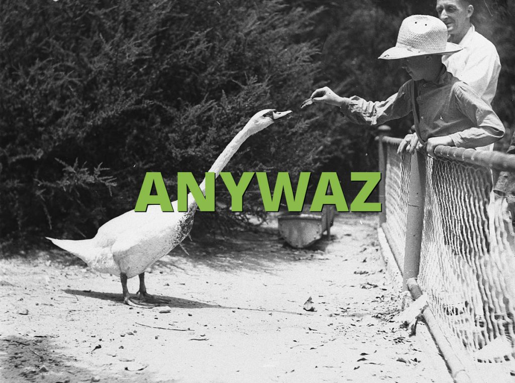 ANYWAZ