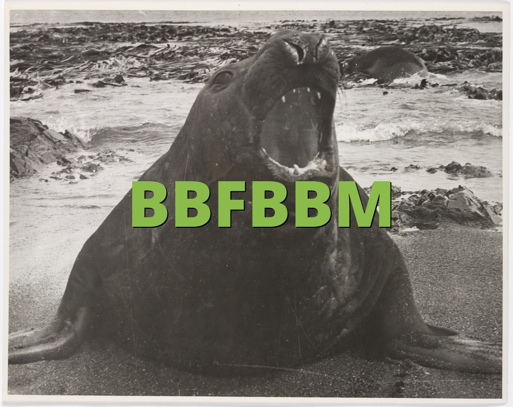 BBFBBM
