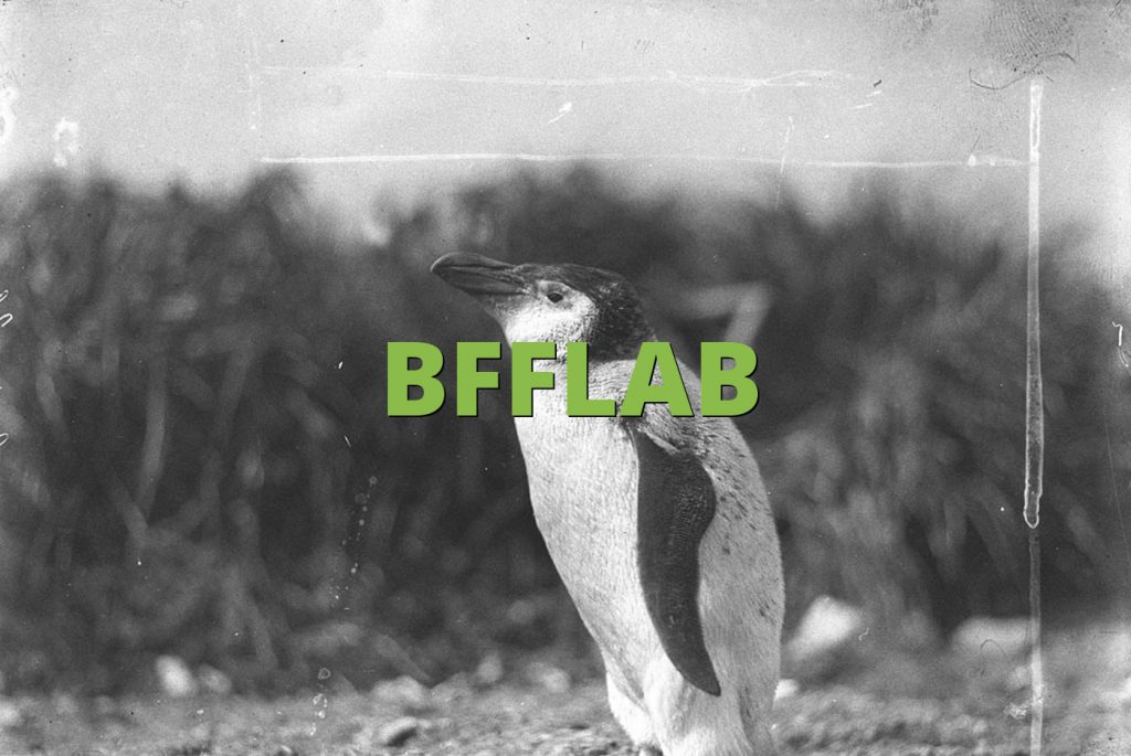 BFFLAB