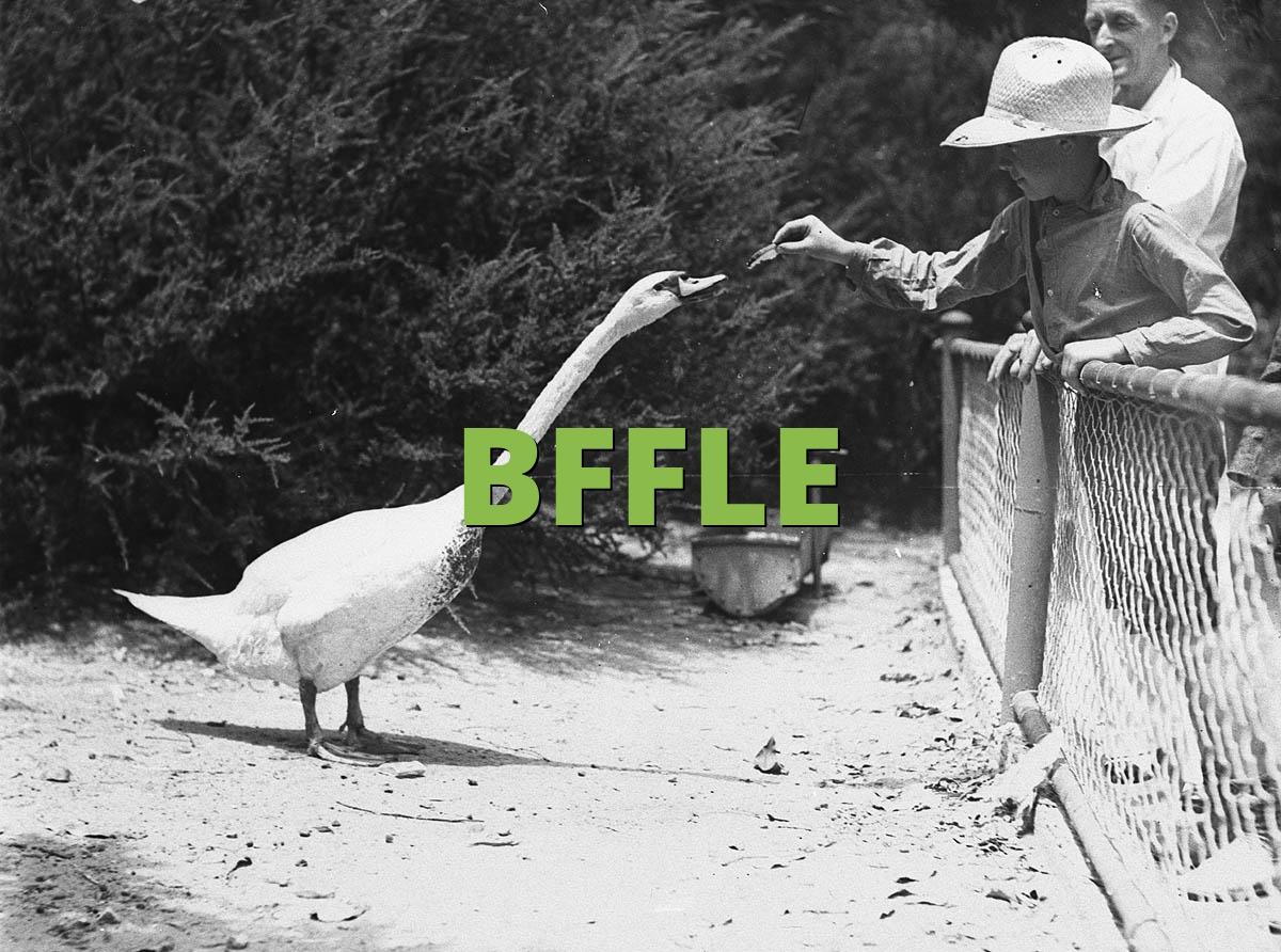 BFFLE