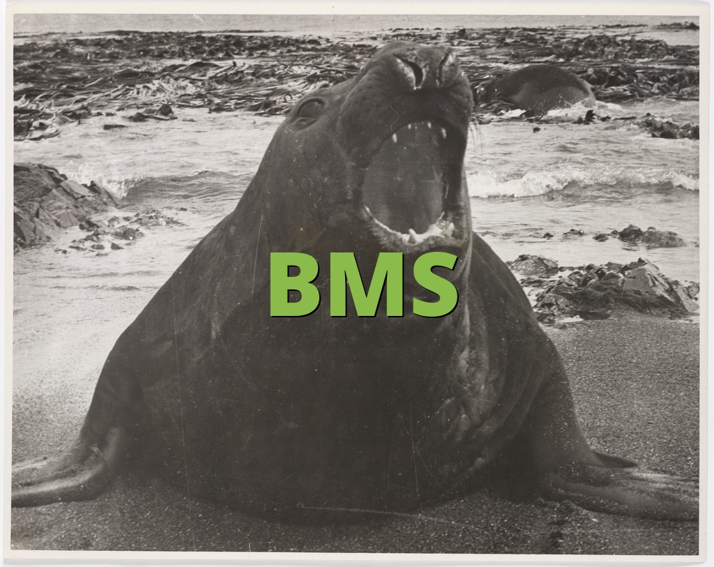 What does rate bms mean on instagram