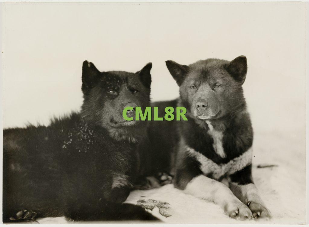 CML8R