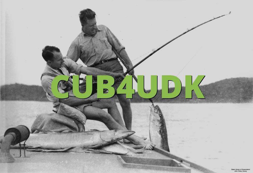 CUB4UDK