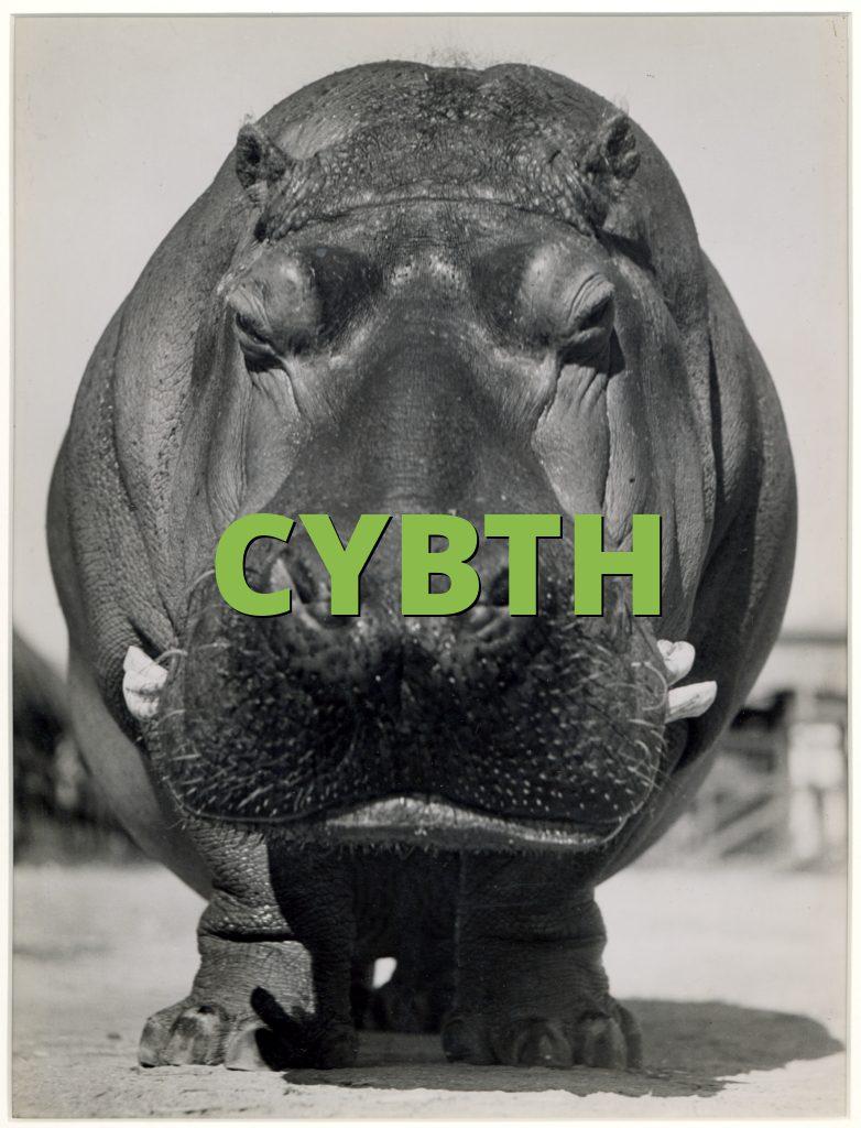 CYBTH