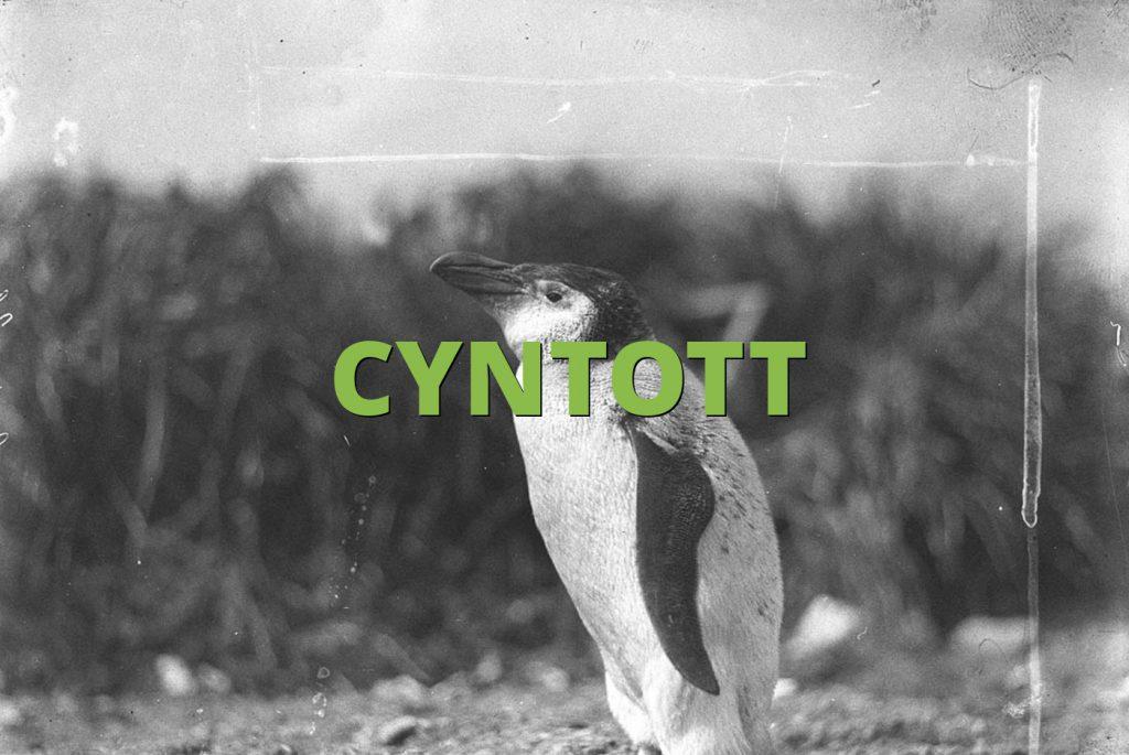 CYNTOTT
