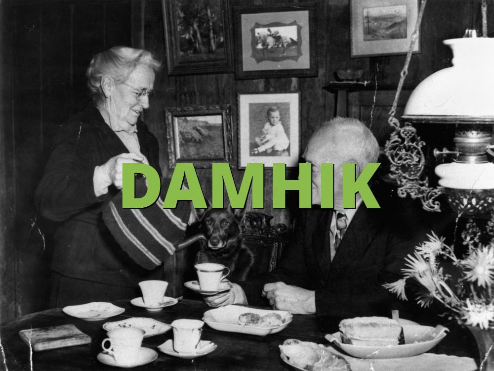 DAMHIK