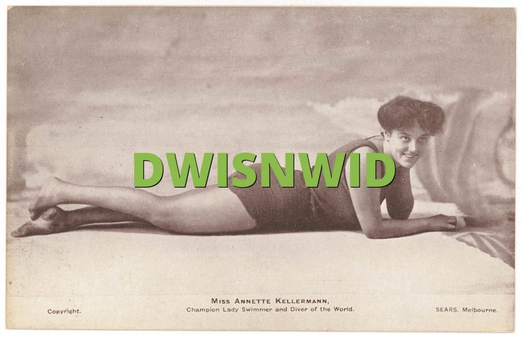 DWISNWID