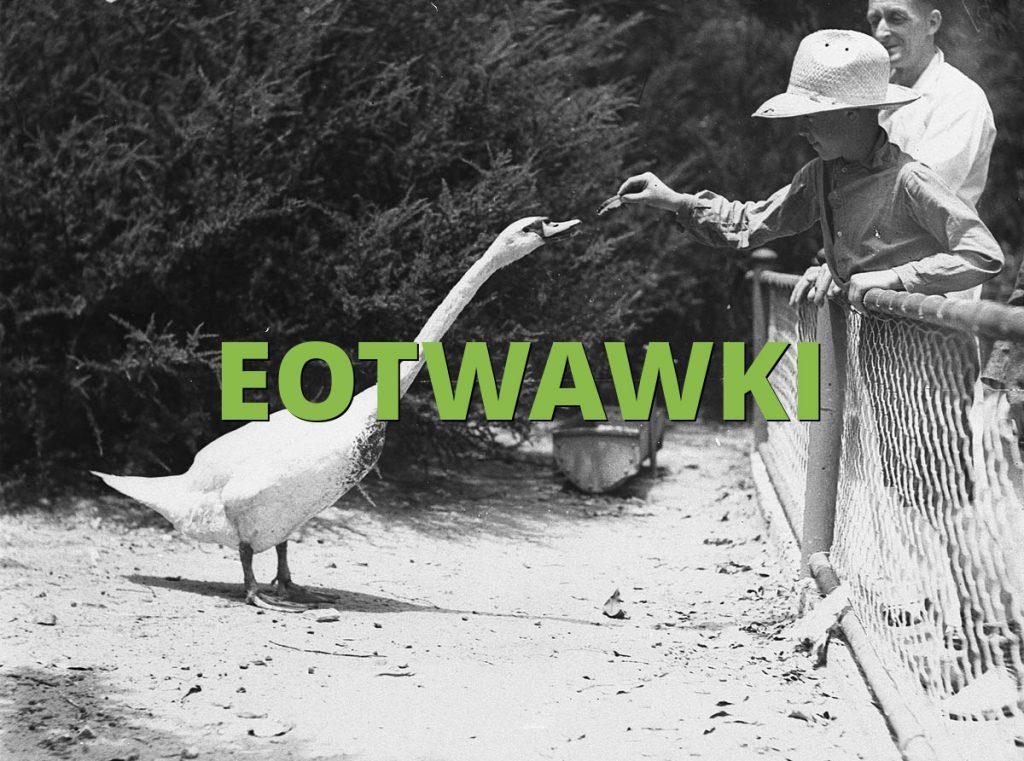 EOTWAWKI
