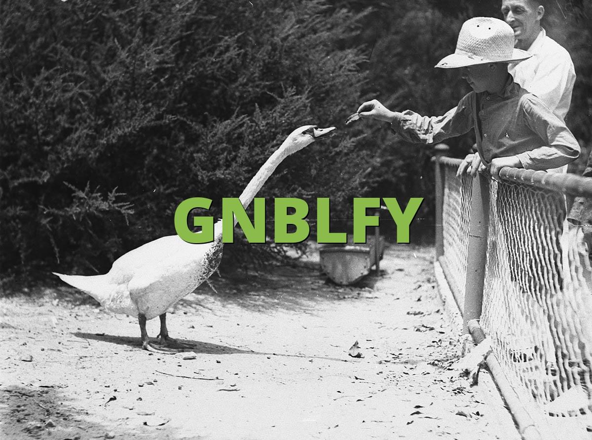 GNBLFY