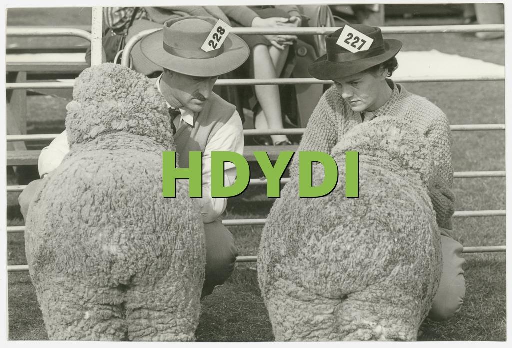 HDYDI