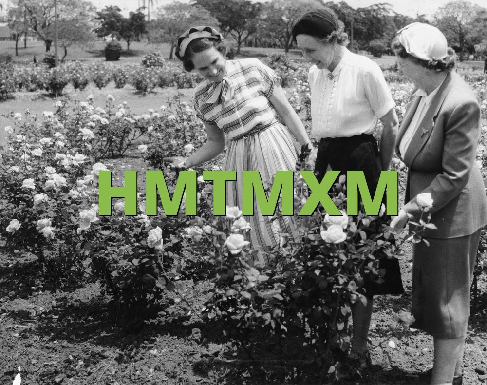 HMTMXM
