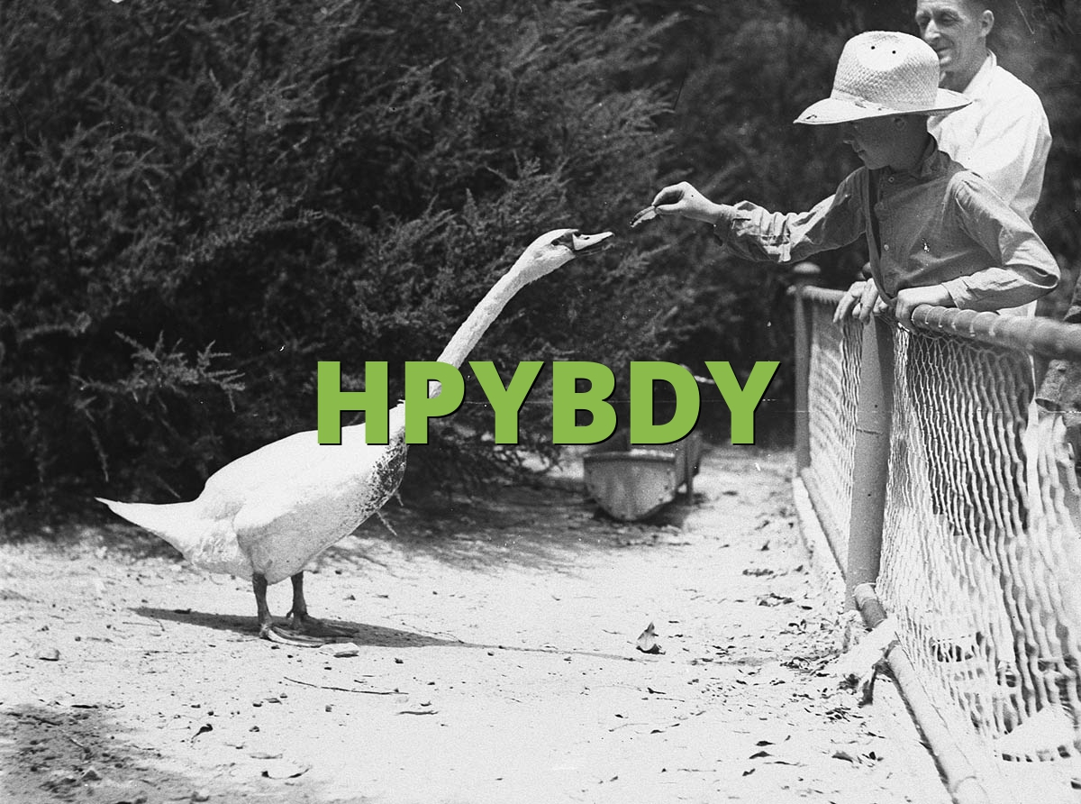 HPYBDY
