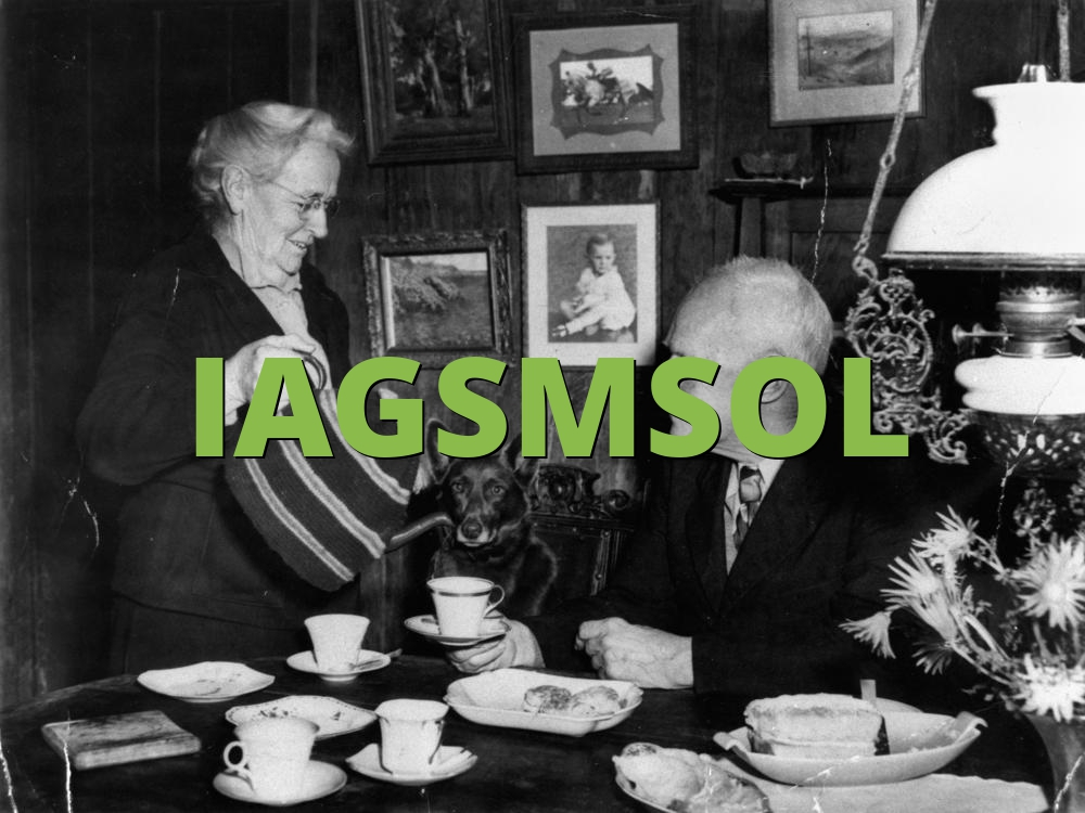 IAGSMSOL