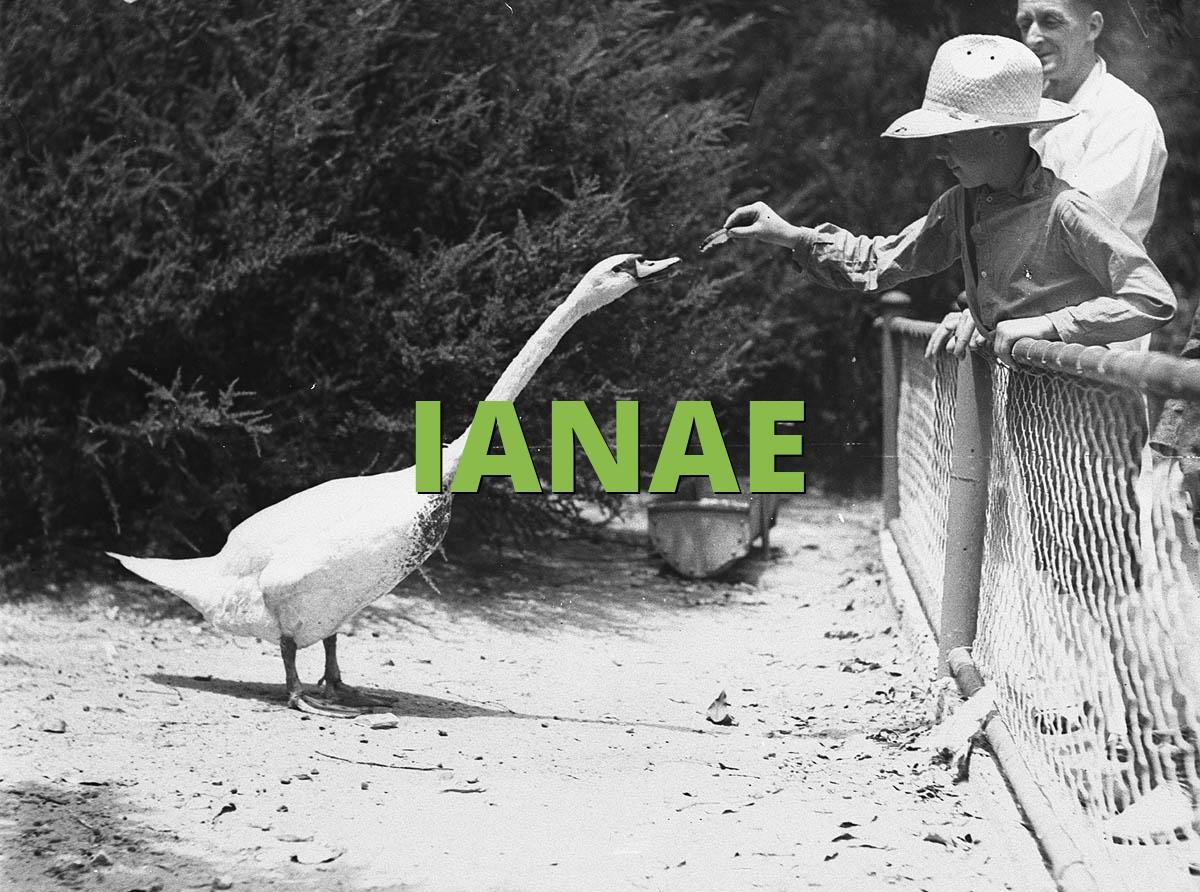 IANAE