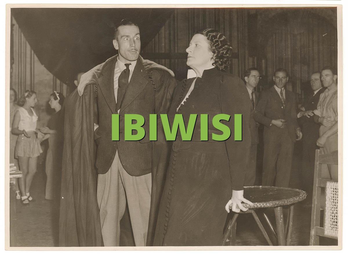 IBIWISI