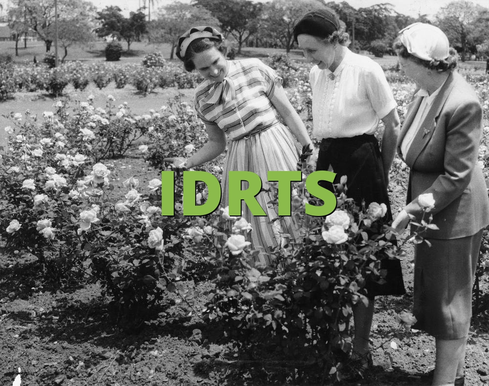 IDRTS