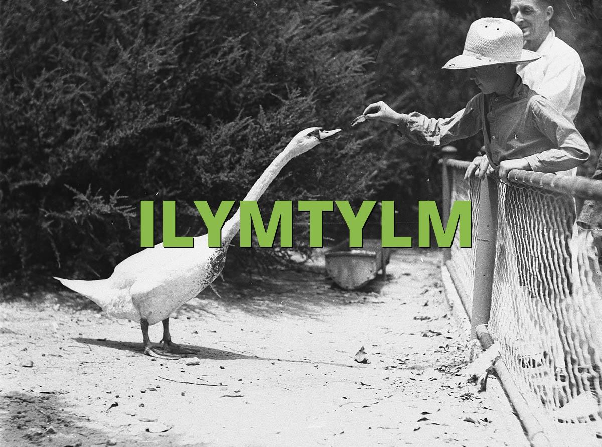 ILYMTYLM