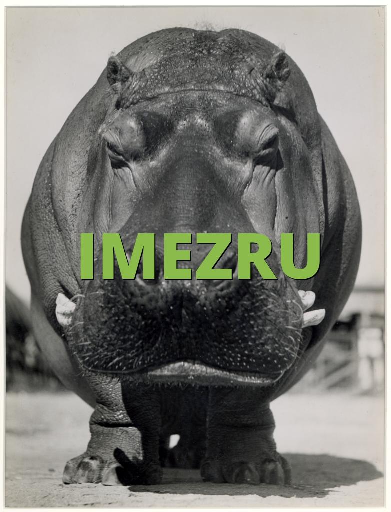 IMEZRU
