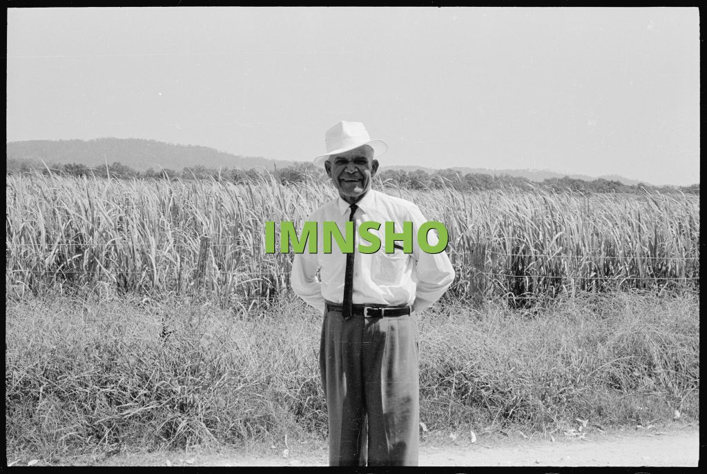 IMNSHO