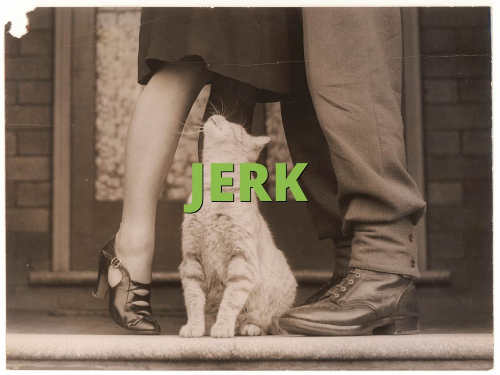 jerk » what does jerk mean? » slang