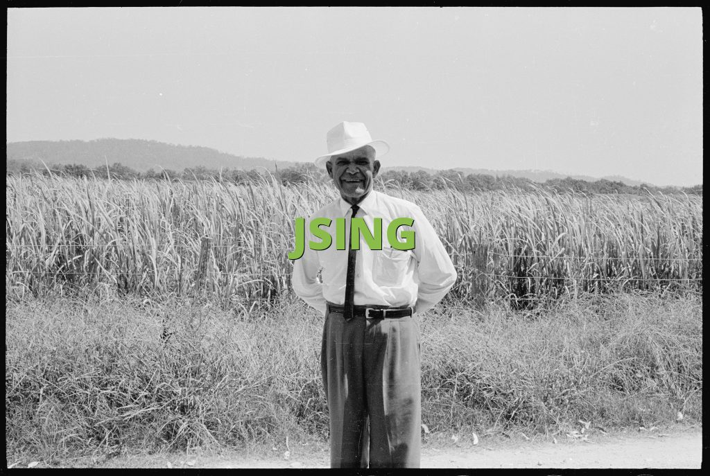JSING
