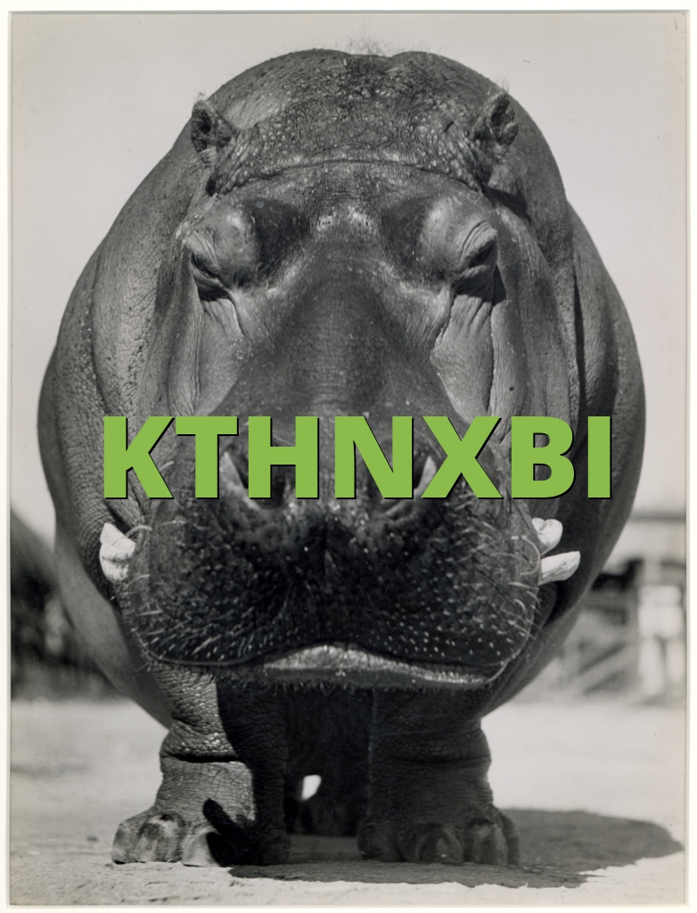 KTHNXBI