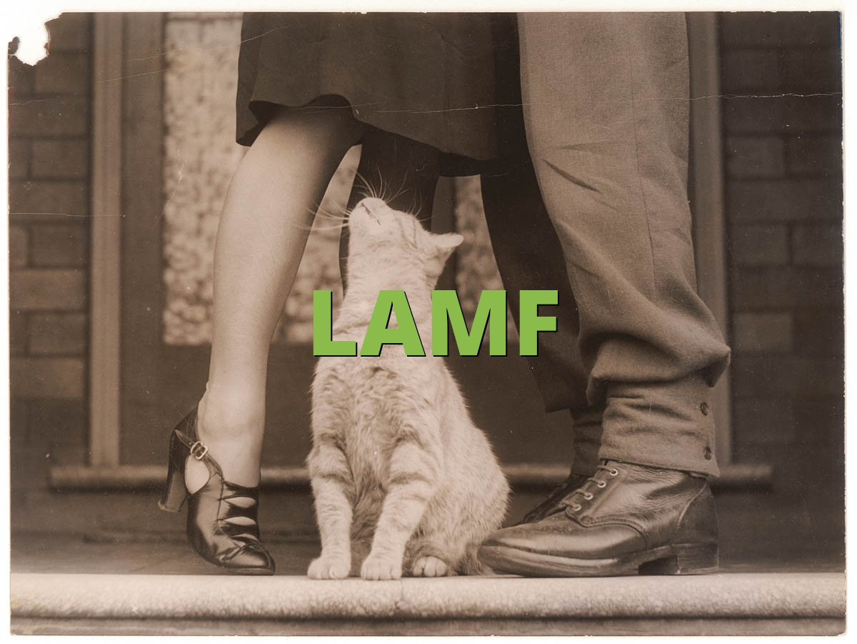 What Does Lamf Mean