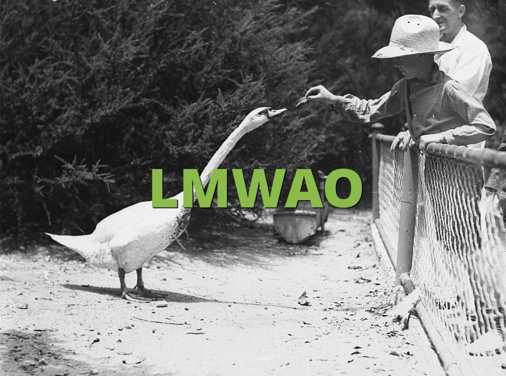 LMWAO