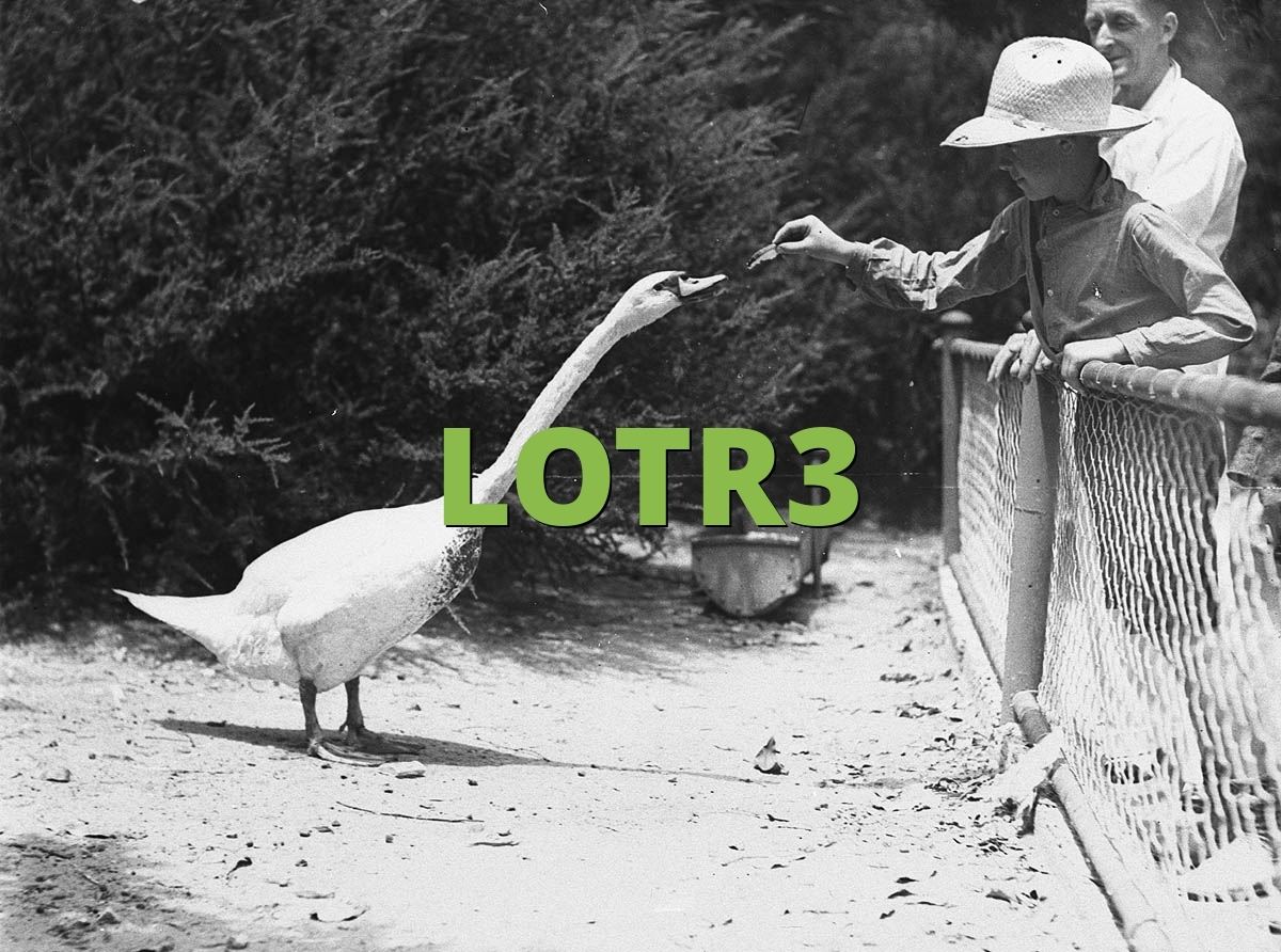 LOTR3