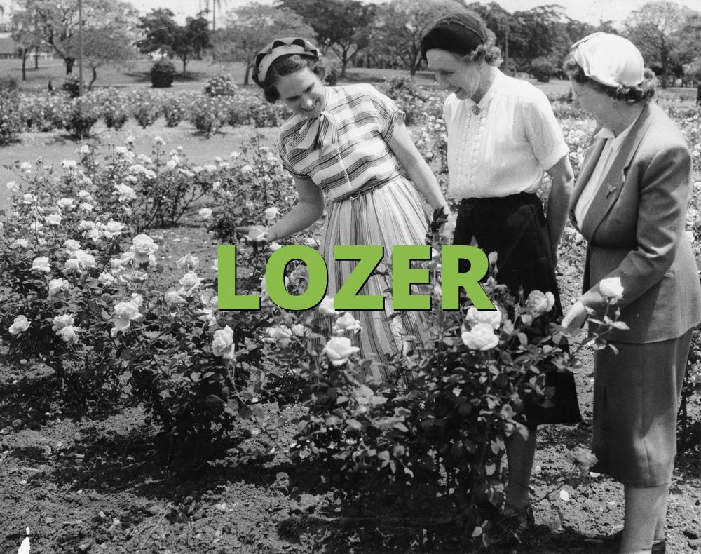 LOZER