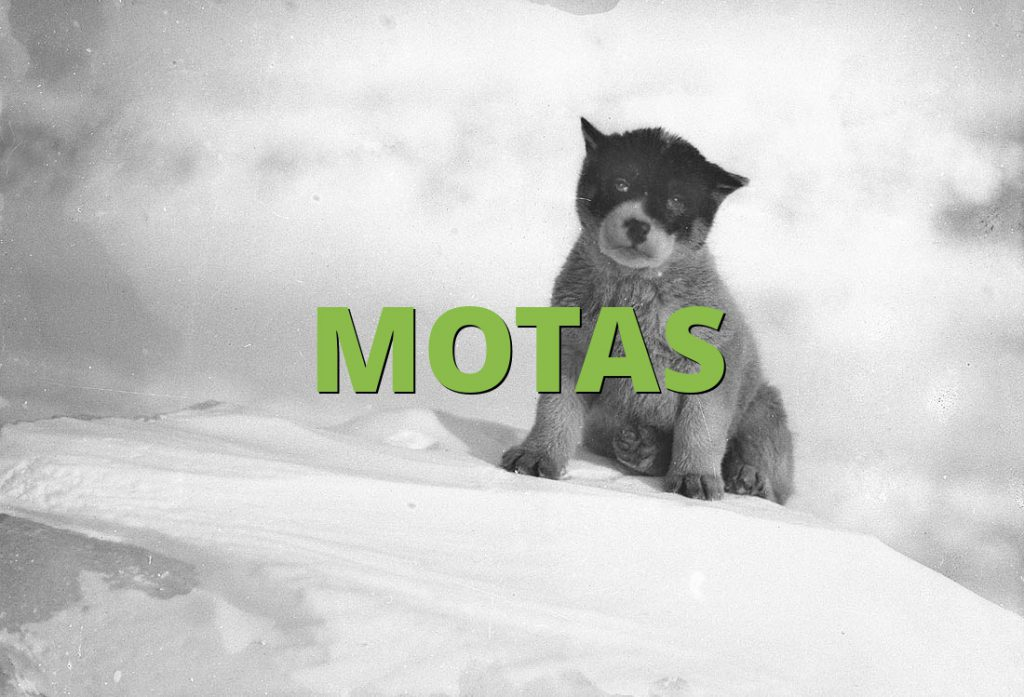 MOTAS