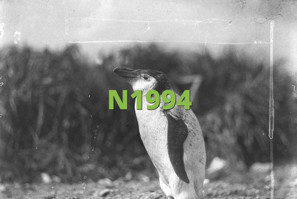 N1994