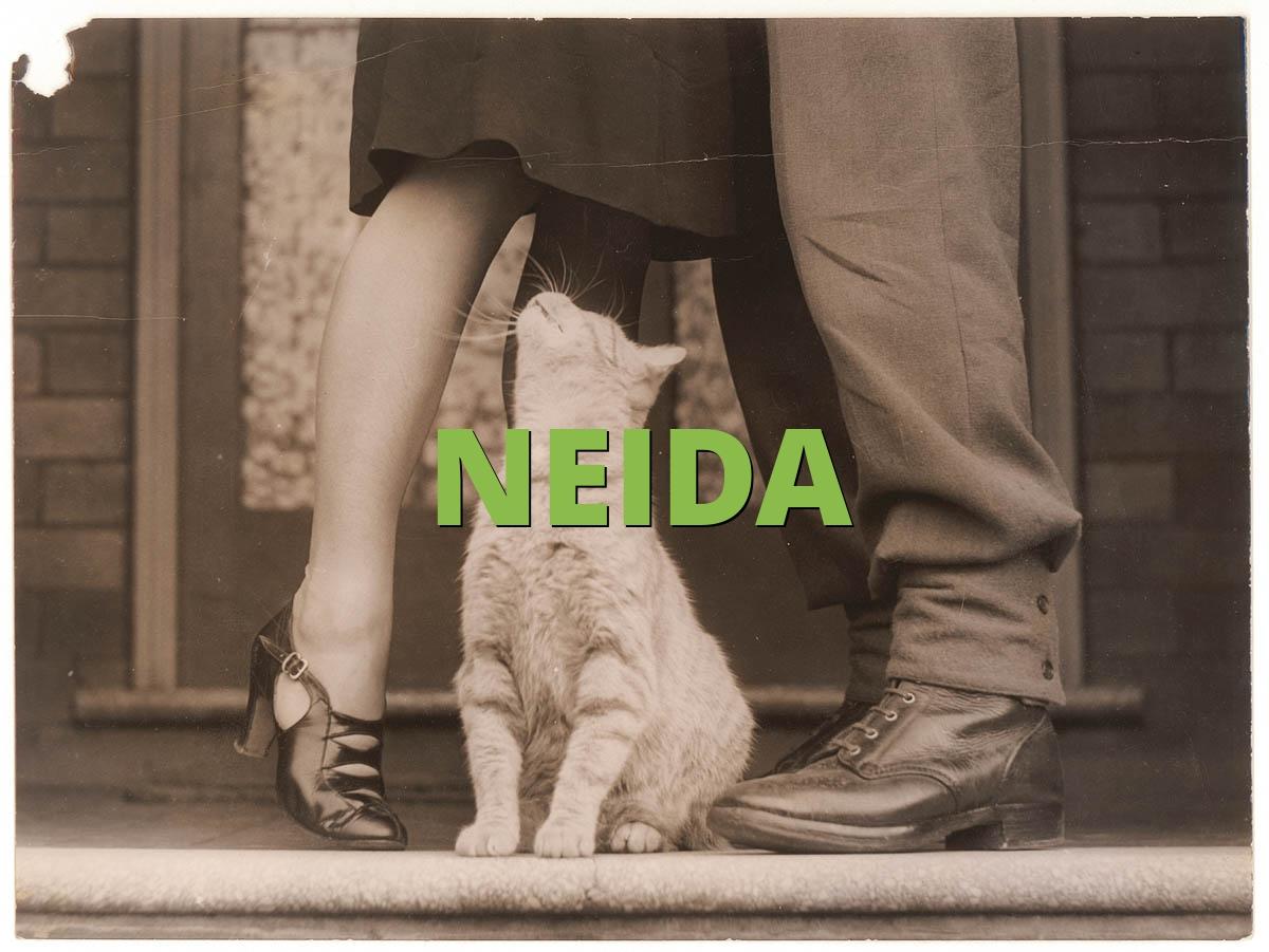 NEIDA