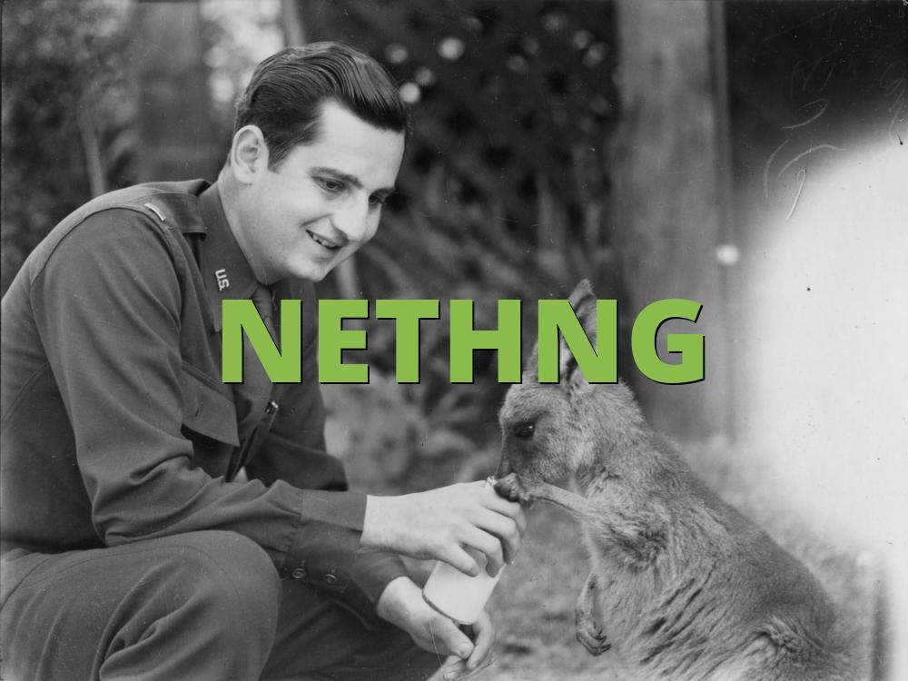 NETHNG