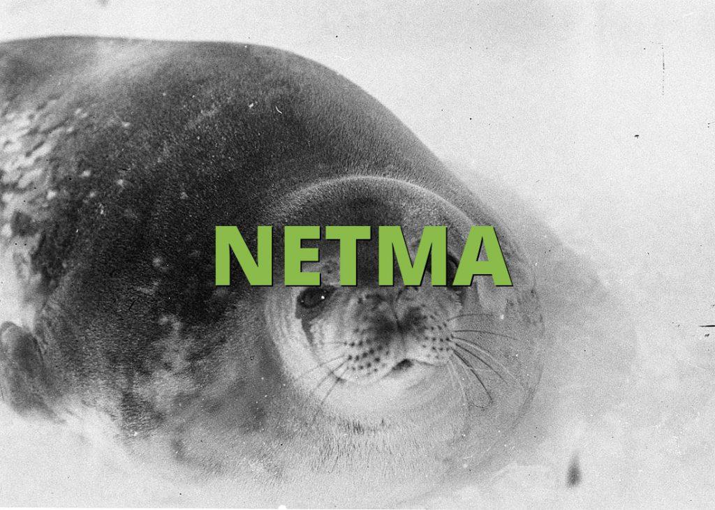 NETMA