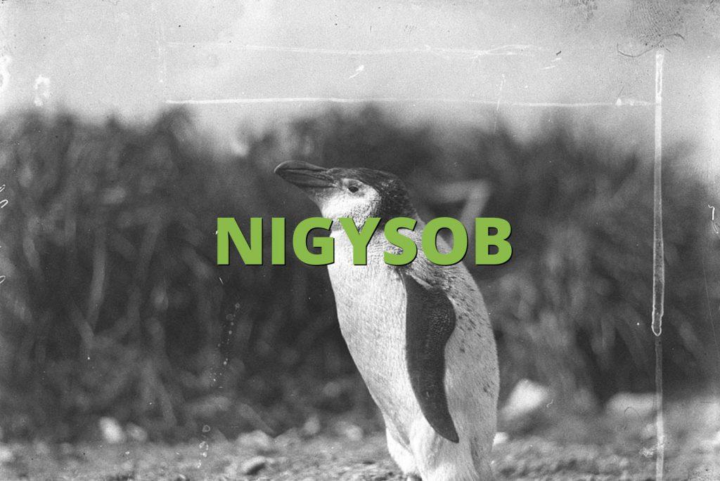 NIGYSOB