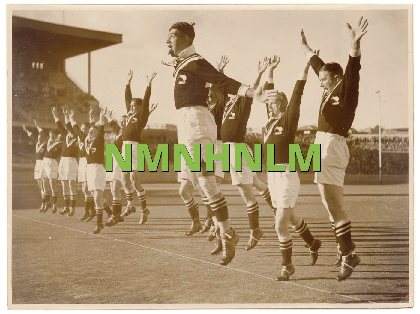 NMNHNLM