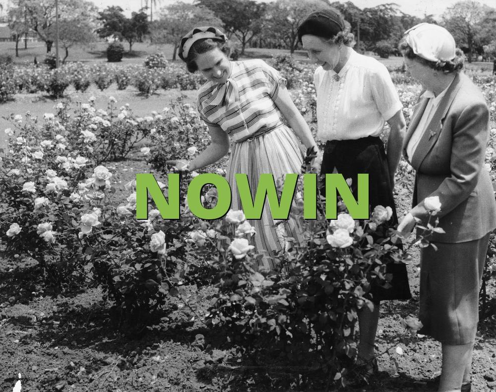 NOWIN