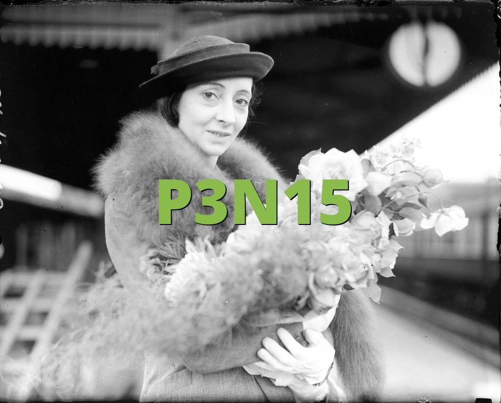 P3N15