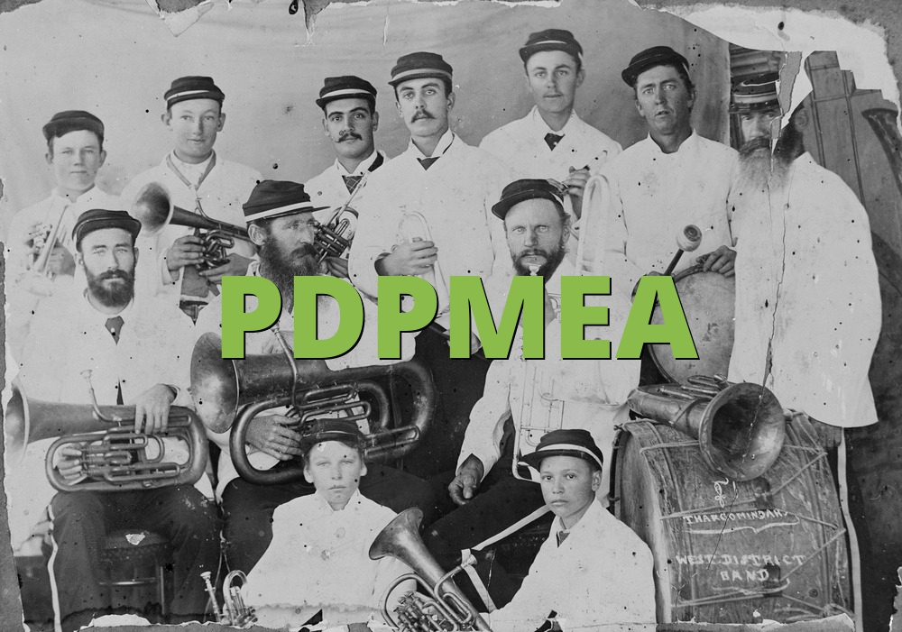 PDPMEA
