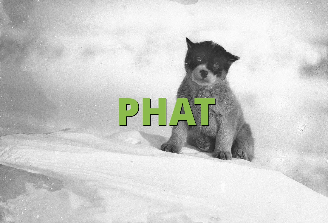 Phat 187 What Does Phat Mean 187 Slang Org