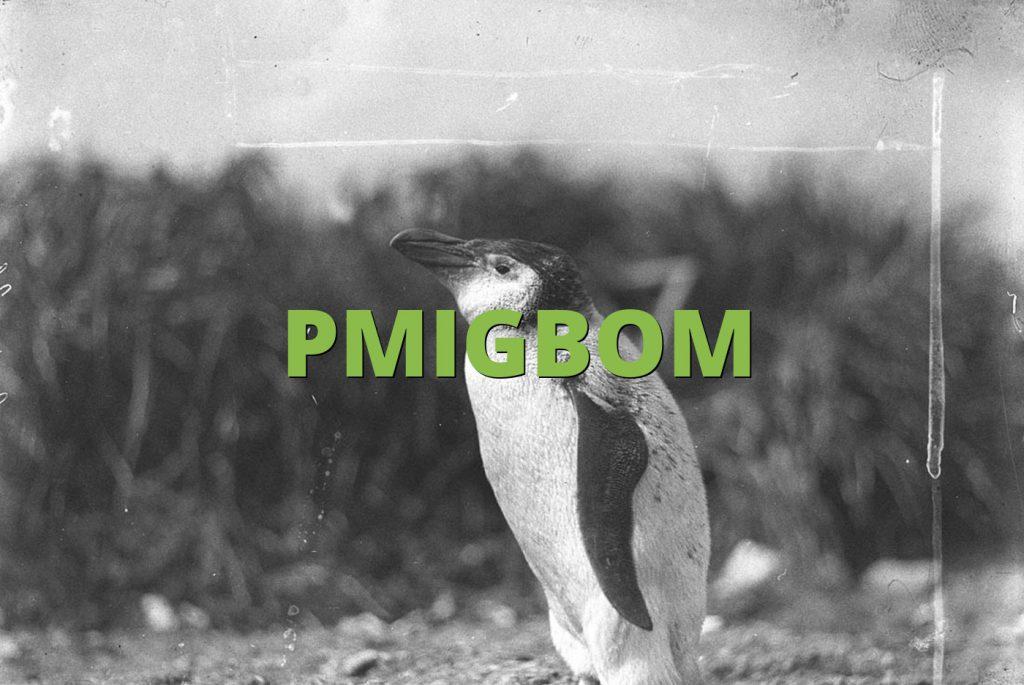 PMIGBOM