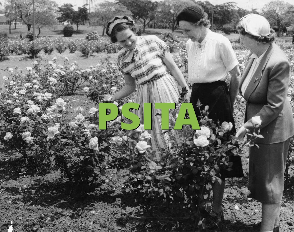 PSITA