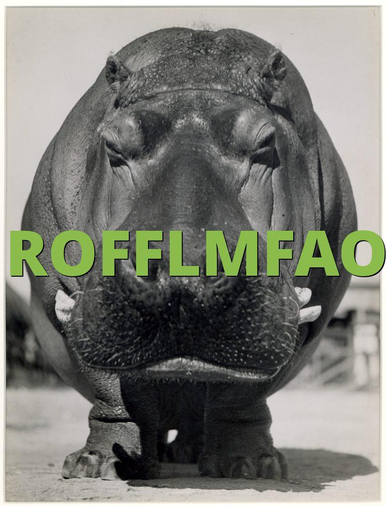 ROFFLMFAO