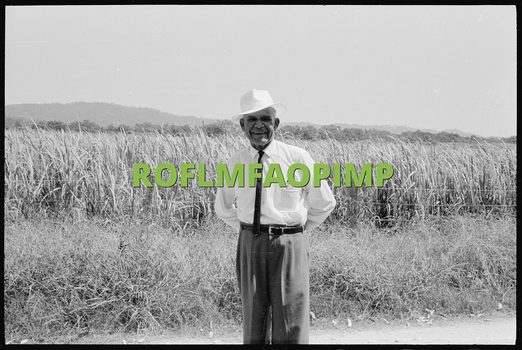 ROFLMFAOPIMP