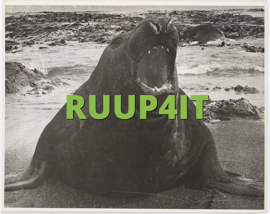 RUUP4IT