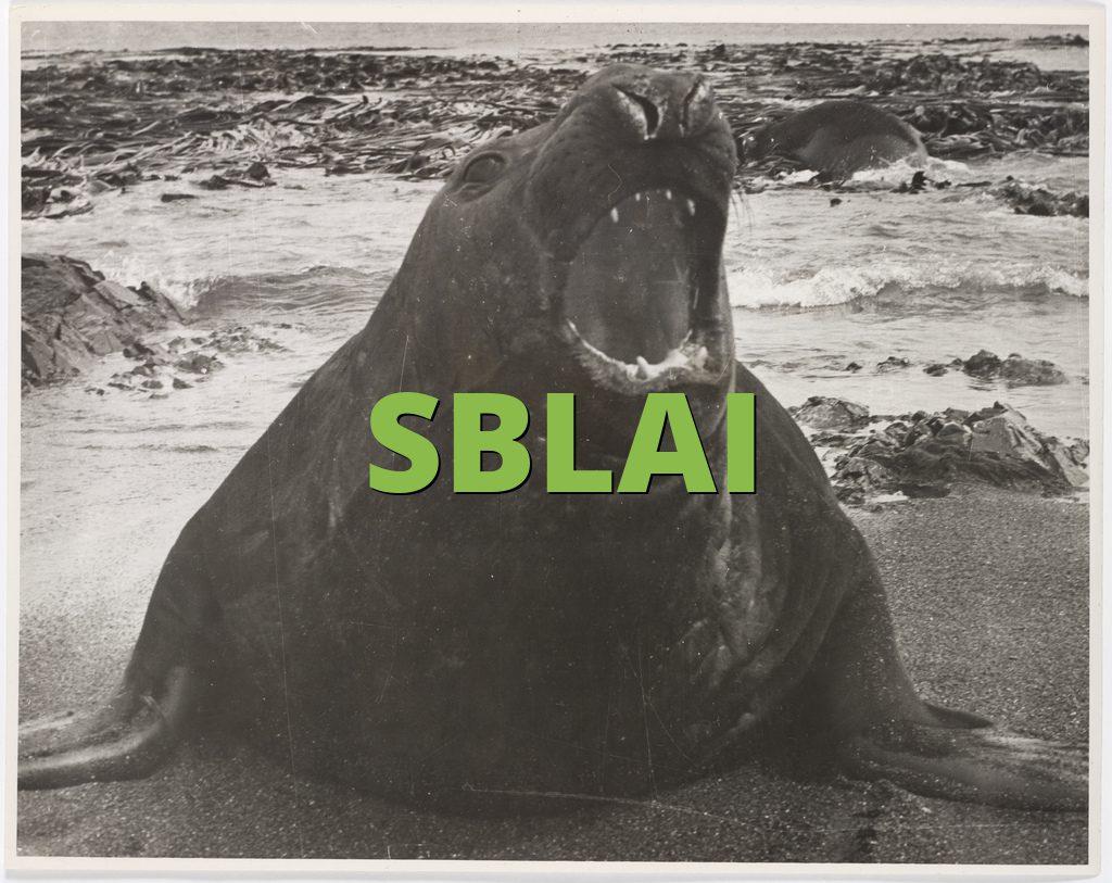 SBLAI