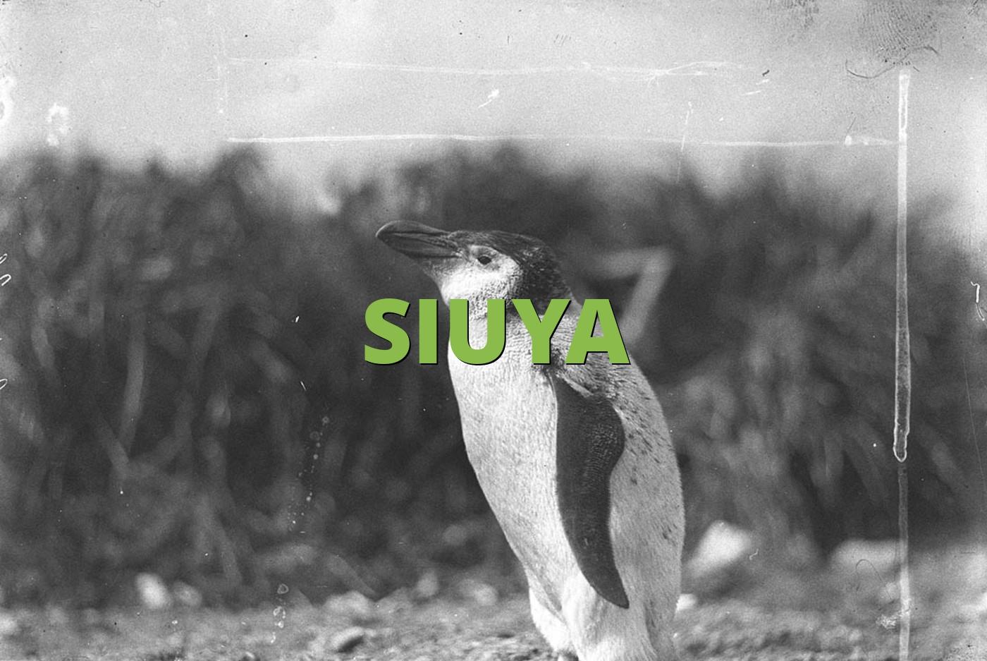 SIUYA